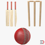 Kolekcja Cricket Generic 3d model