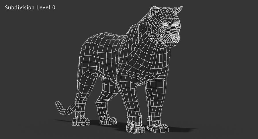 Cougar (Fur) royalty-free 3d model - Preview no. 17