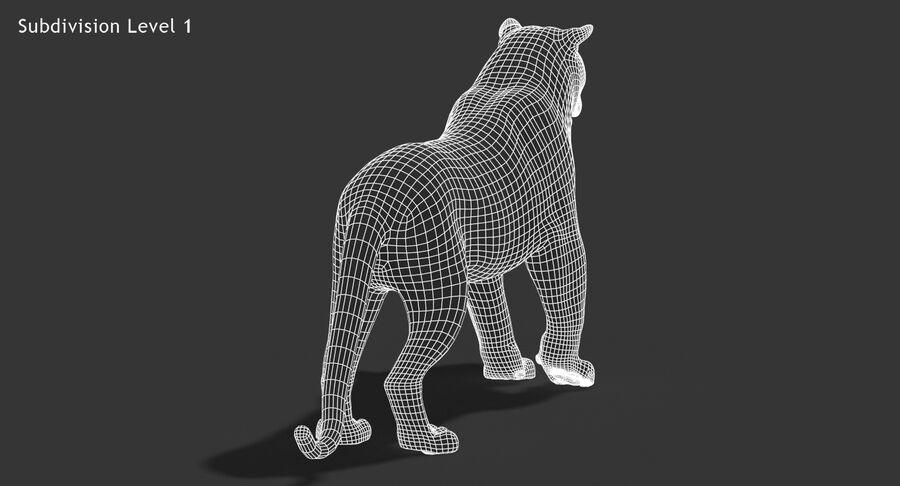 Cougar (Fur) royalty-free 3d model - Preview no. 20