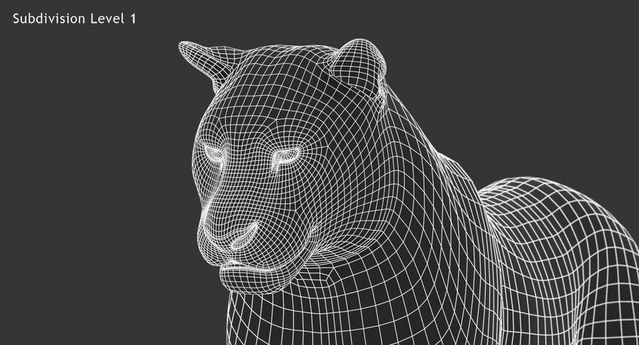 Cougar (Animated, Cartoon) royalty-free 3d model - Preview no. 22