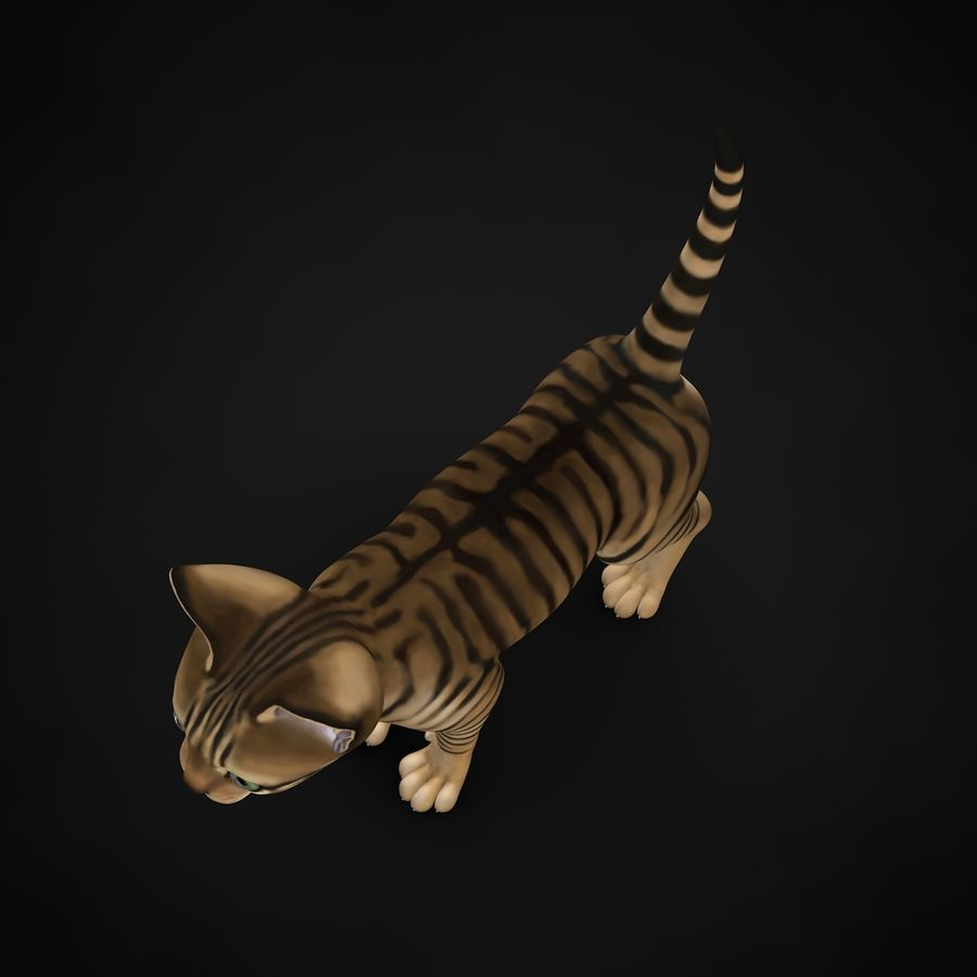 Chaton (sans poils) royalty-free 3d model - Preview no. 10