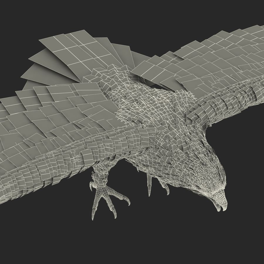 Águila calva royalty-free modelo 3d - Preview no. 29