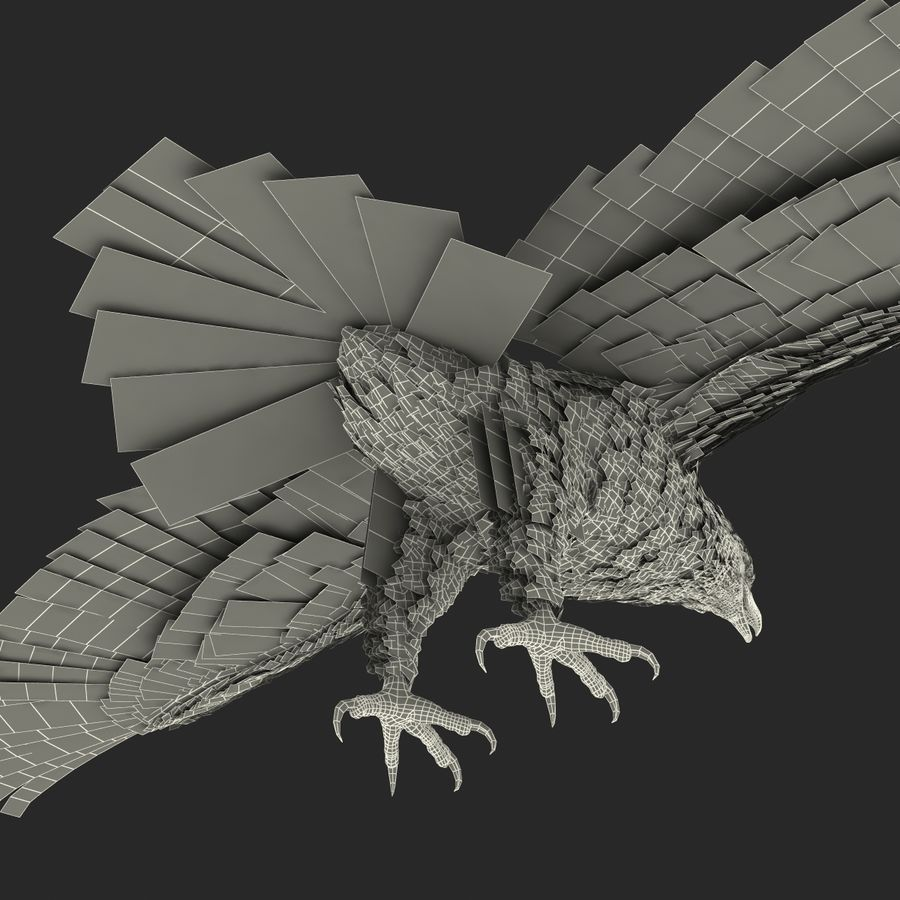 Águila calva royalty-free modelo 3d - Preview no. 31