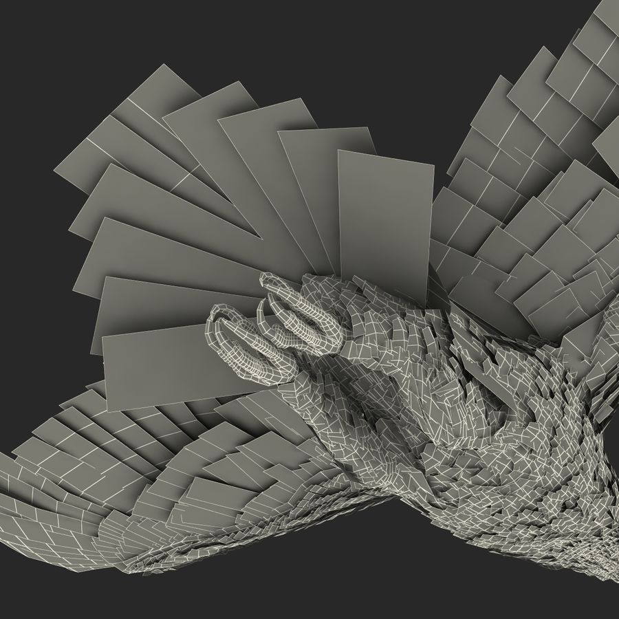 Bald Eagle Pose 4 royalty-free 3d model - Preview no. 30