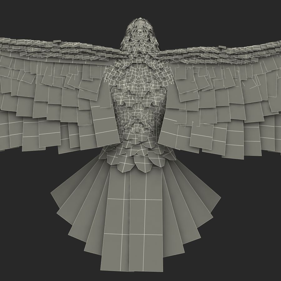 Bald Eagle Pose 3 royalty-free 3d model - Preview no. 32