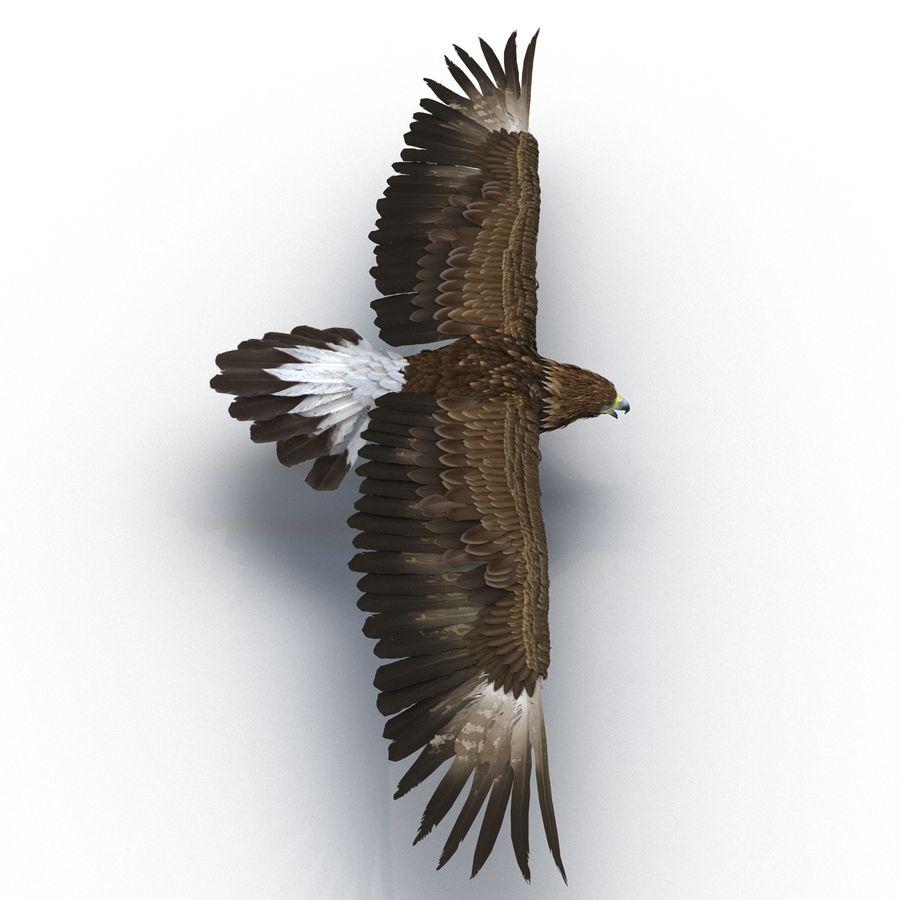 Águila dorada royalty-free modelo 3d - Preview no. 4