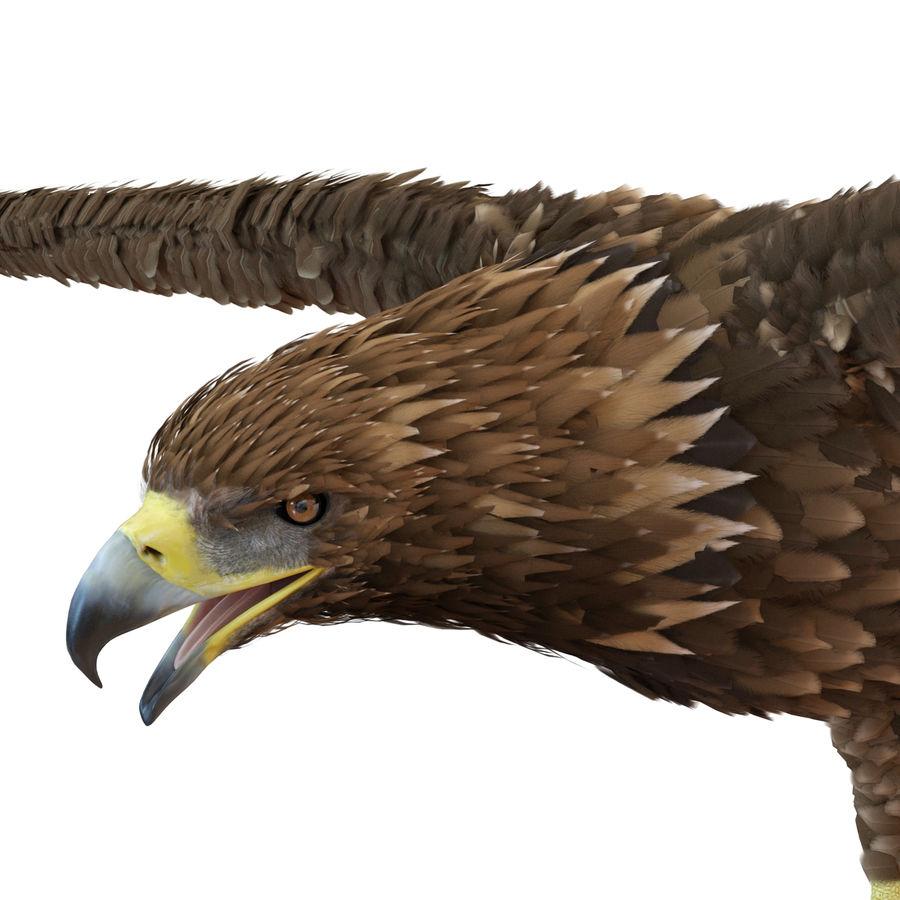 Águila dorada royalty-free modelo 3d - Preview no. 14