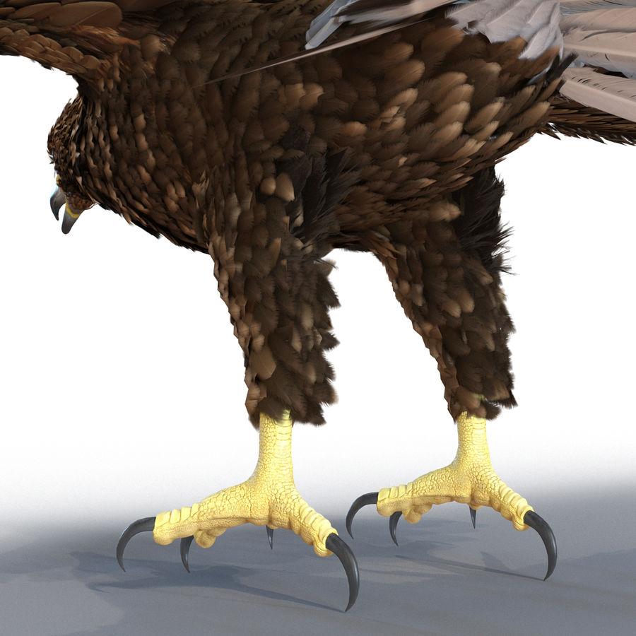 Águila dorada royalty-free modelo 3d - Preview no. 17