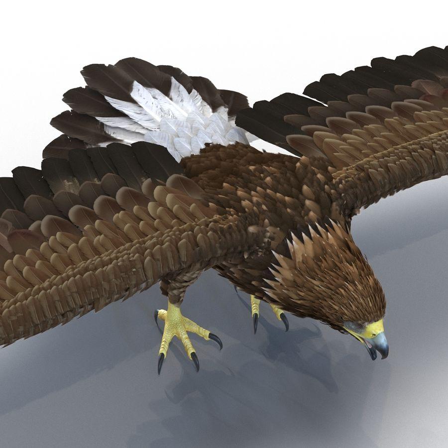 Águila dorada royalty-free modelo 3d - Preview no. 12