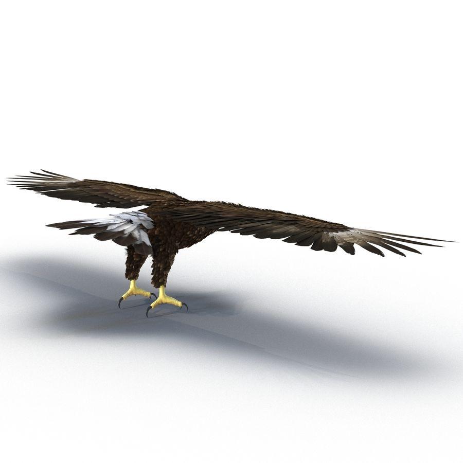 Águila dorada royalty-free modelo 3d - Preview no. 7