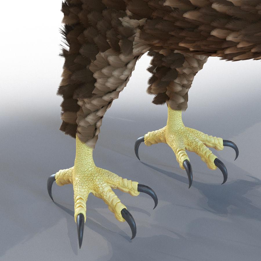 Águila dorada royalty-free modelo 3d - Preview no. 16