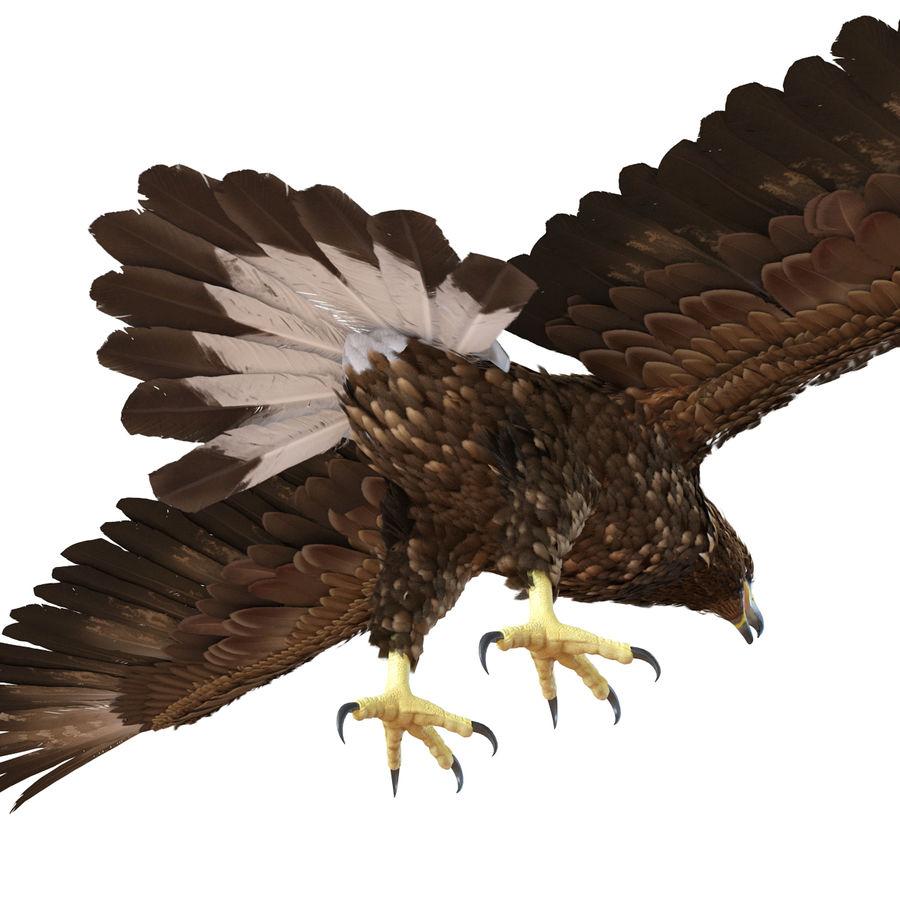 Águila dorada royalty-free modelo 3d - Preview no. 11
