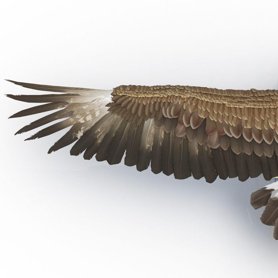 Águila dorada royalty-free modelo 3d - Preview no. 19