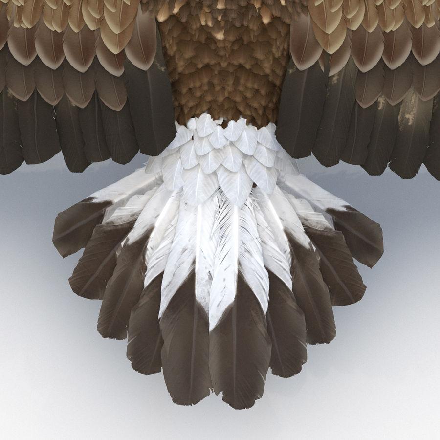 Águila dorada royalty-free modelo 3d - Preview no. 20