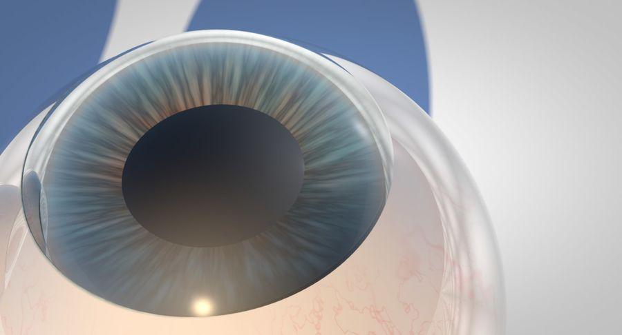 Eyeballs royalty-free 3d model - Preview no. 3