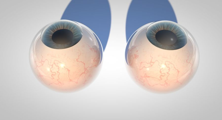 Eyeballs royalty-free 3d model - Preview no. 5