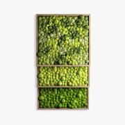 panel moss 3d model