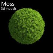 Moss 3d models 3d model