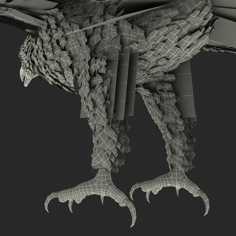 Bald Eagle Animated royalty-free 3d model - Preview no. 76