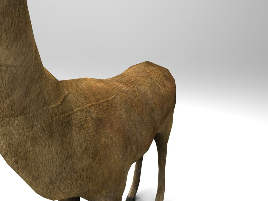 Hirsch royalty-free 3d model - Preview no. 11