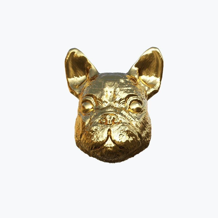 Dog Head royalty-free 3d model - Preview no. 2