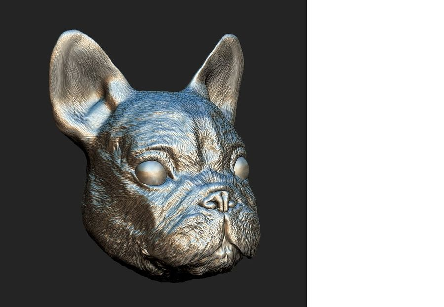 Dog Head royalty-free 3d model - Preview no. 7