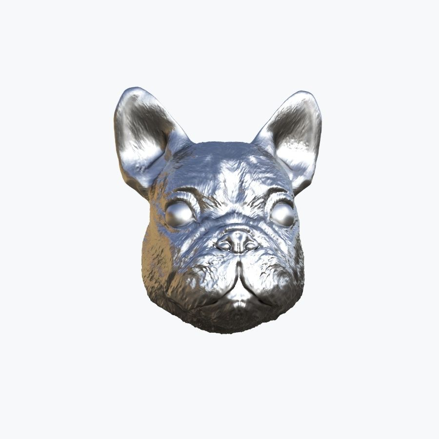 Dog Head royalty-free 3d model - Preview no. 8