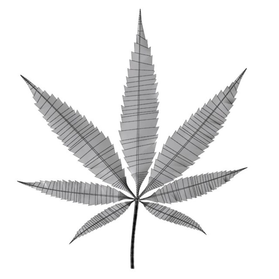 Cannabis Leaf royalty-free 3d model - Preview no. 3
