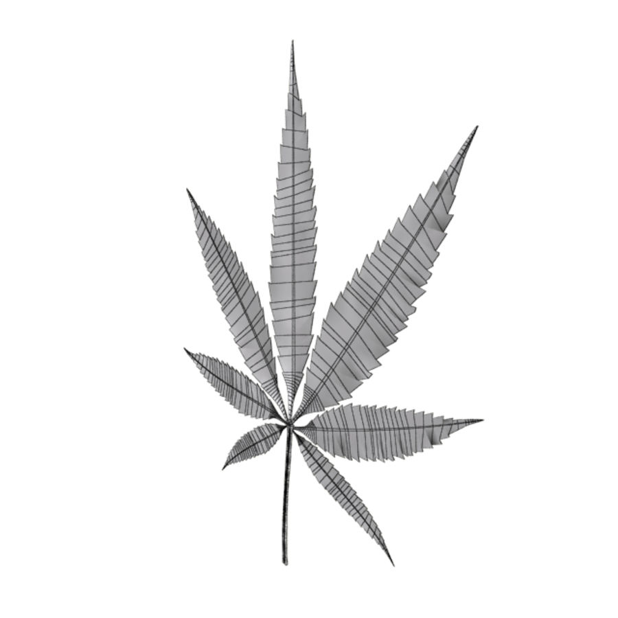 Cannabis Leaf royalty-free 3d model - Preview no. 4