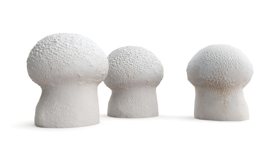 Champignon Puffball High et Low Poly (2) royalty-free 3d model - Preview no. 2