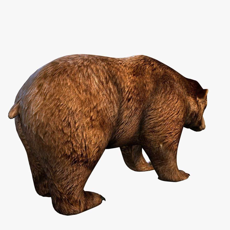 Bear royalty-free 3d model - Preview no. 4