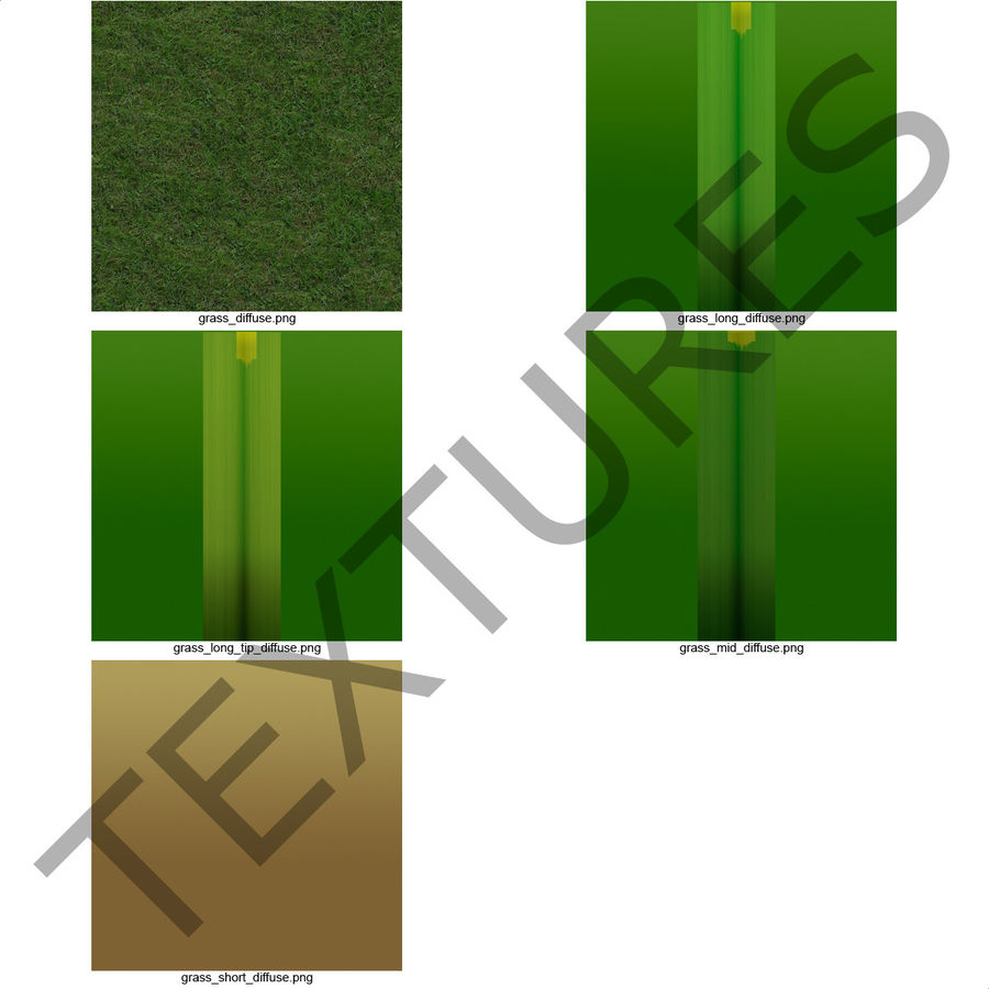 Duizendpoot Warm Season Grass royalty-free 3d model - Preview no. 20