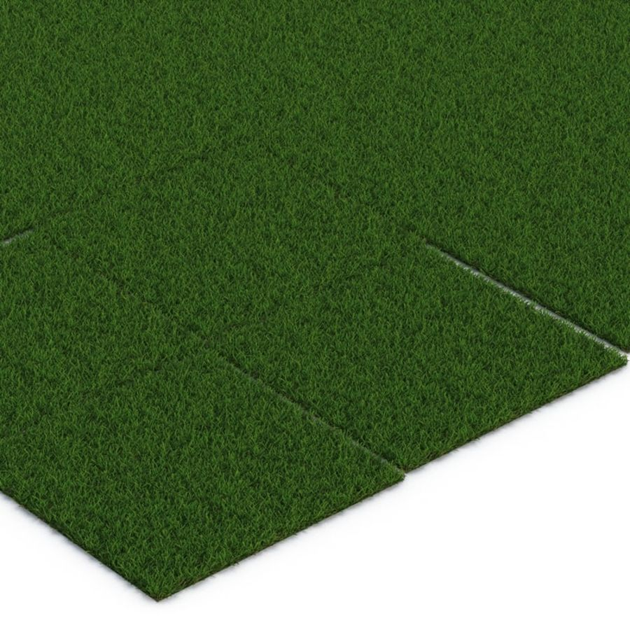 Duizendpoot Warm Season Grass royalty-free 3d model - Preview no. 12
