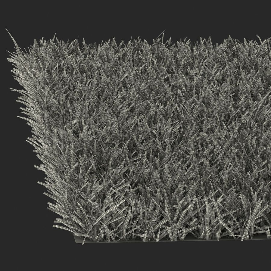 Duizendpoot Warm Season Grass royalty-free 3d model - Preview no. 26