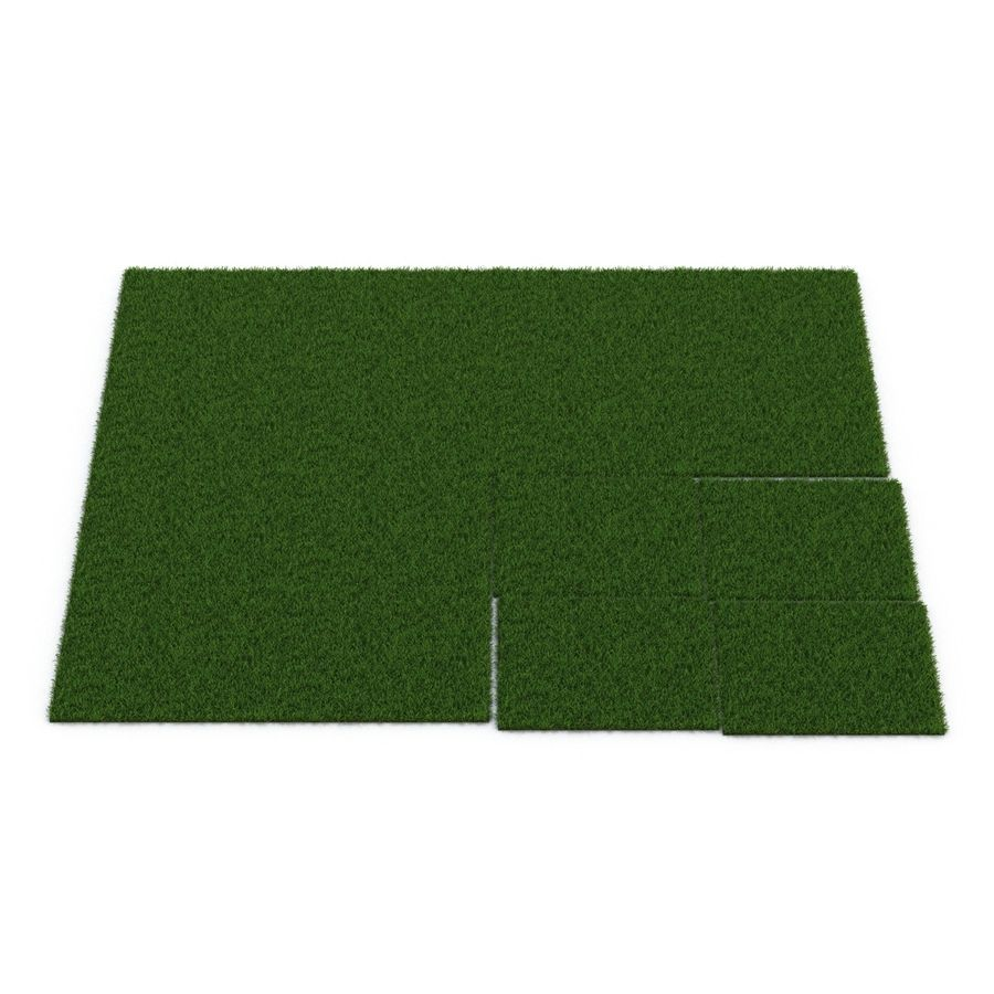 Duizendpoot Warm Season Grass royalty-free 3d model - Preview no. 9
