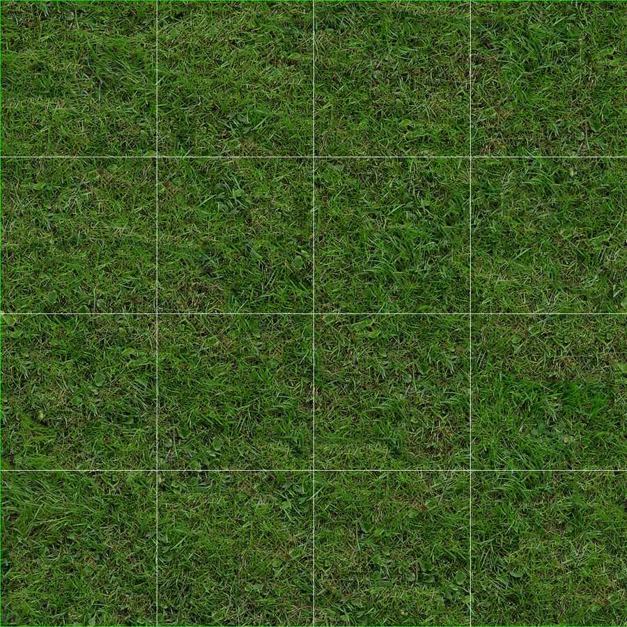 Duizendpoot Warm Season Grass royalty-free 3d model - Preview no. 17