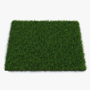 Duizendpoot Warm Season Grass 3d model