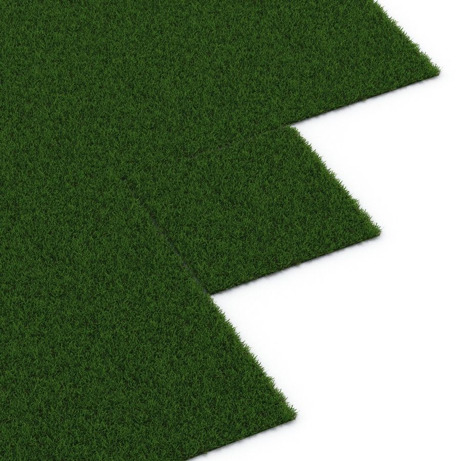 Duizendpoot Warm Season Grass royalty-free 3d model - Preview no. 14