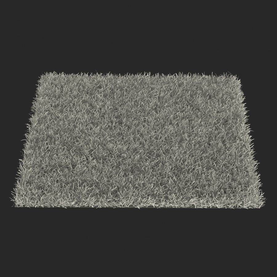 Duizendpoot Warm Season Grass royalty-free 3d model - Preview no. 22