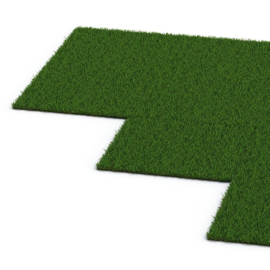 Duizendpoot Warm Season Grass royalty-free 3d model - Preview no. 13