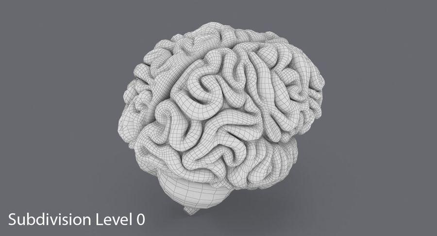 Mänsklig hjärna royalty-free 3d model - Preview no. 16