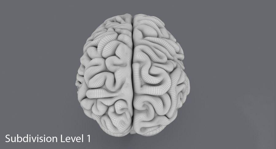Mänsklig hjärna royalty-free 3d model - Preview no. 15