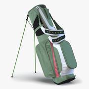 Golfväska 4 Generic 3d model