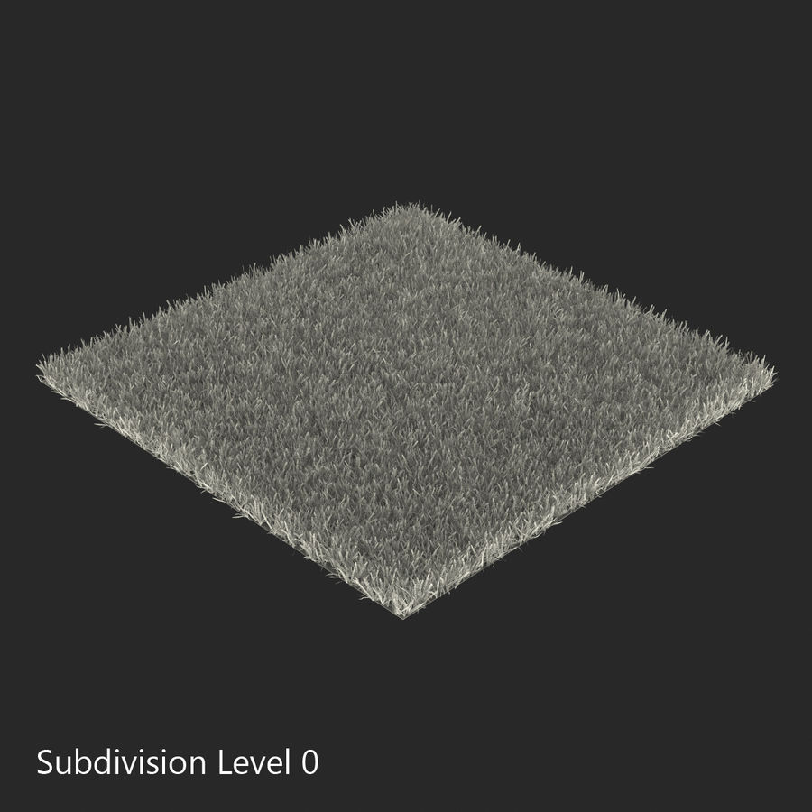 Zoysia Grass royalty-free 3d model - Preview no. 14