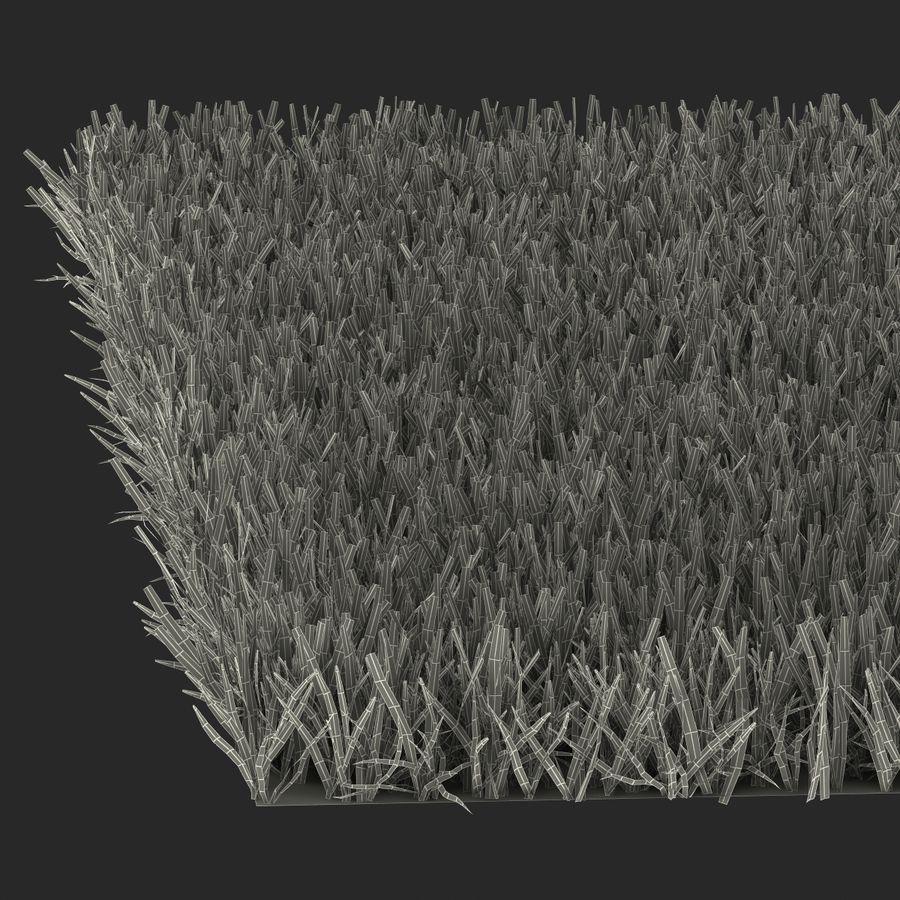 Zoysia Grass royalty-free 3d model - Preview no. 22