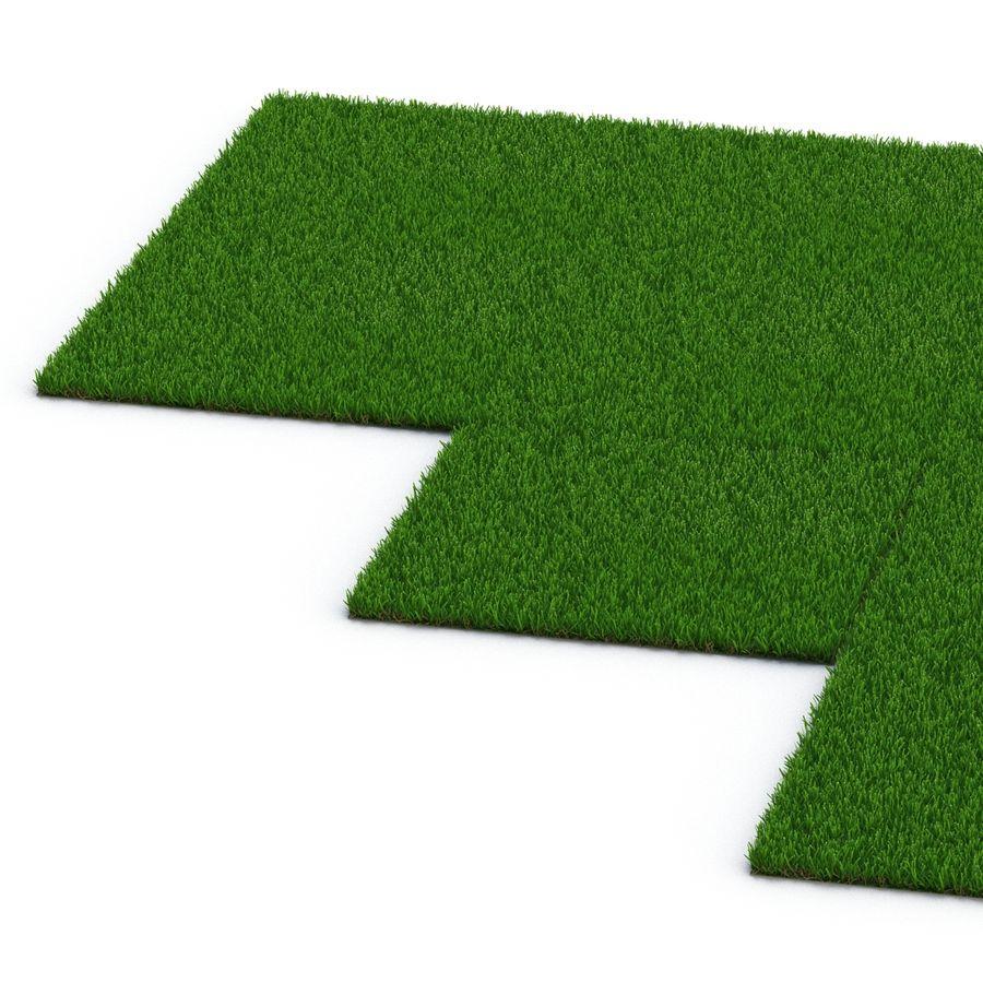 Zoysia Grass royalty-free 3d model - Preview no. 12
