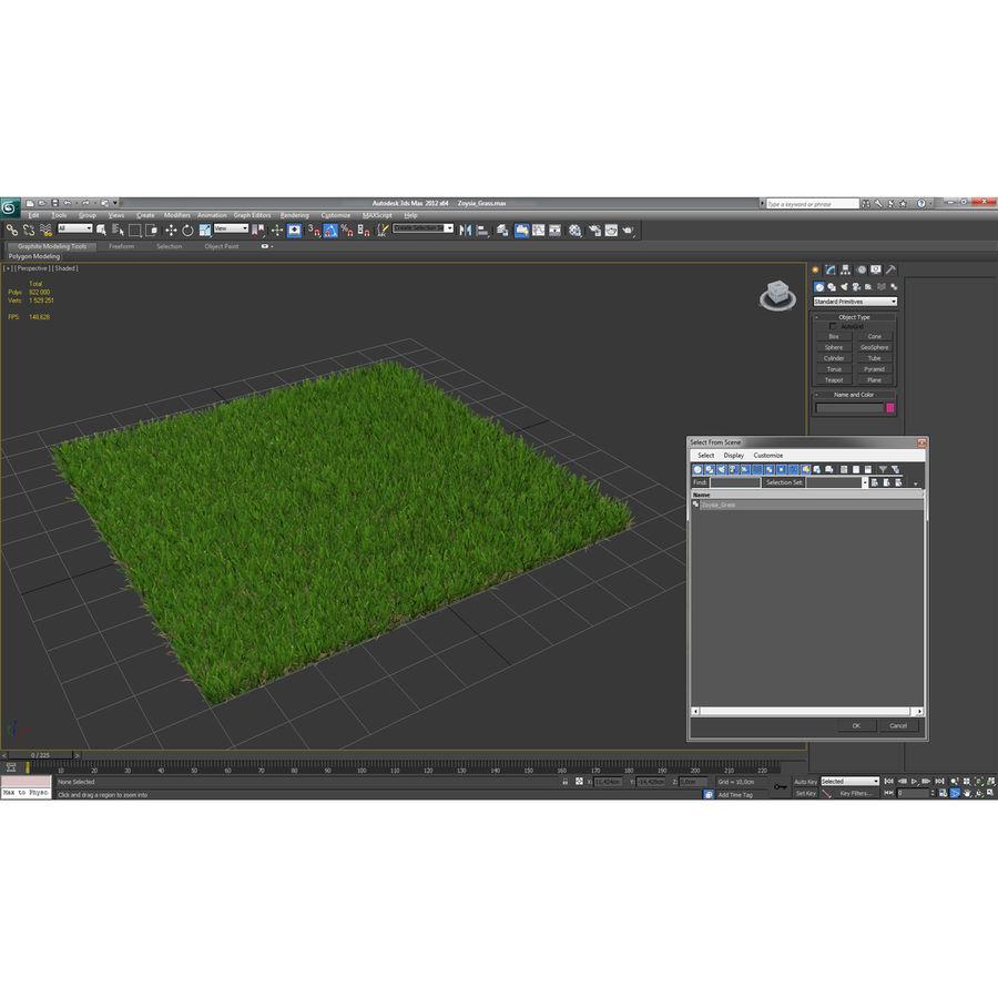 Zoysia Grass royalty-free 3d model - Preview no. 18