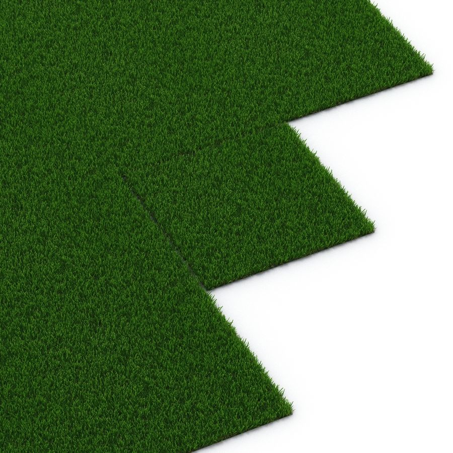 Zoysia Grass royalty-free 3d model - Preview no. 13
