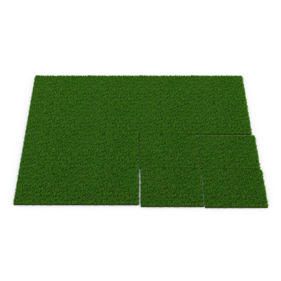 Zoysia Grass royalty-free 3d model - Preview no. 9
