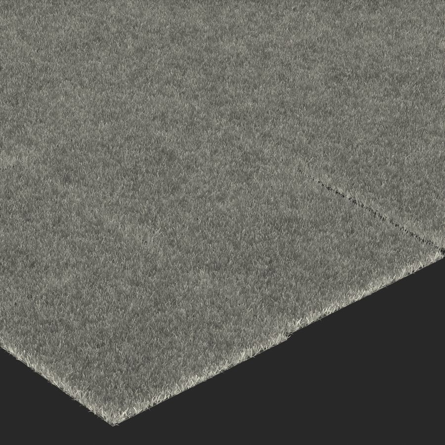 Zoysia Grass royalty-free 3d model - Preview no. 23